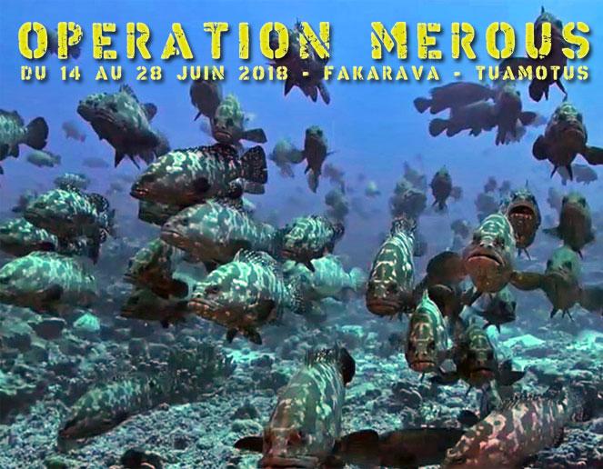 Opération Mérous 2018